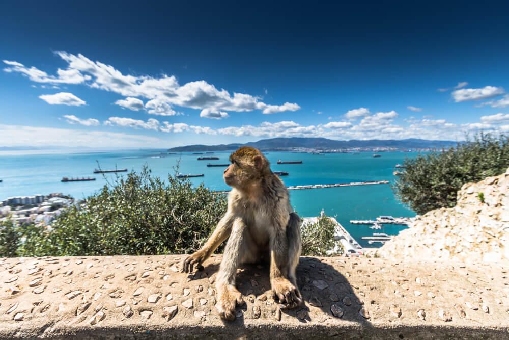 Gibraltar May 2021