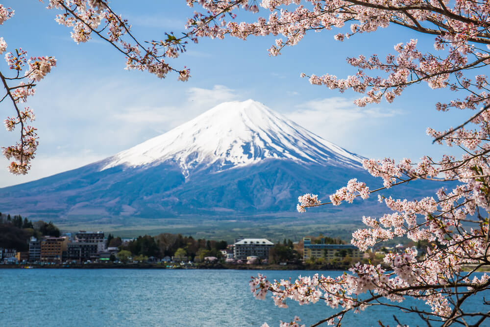 Why Travel to Japan